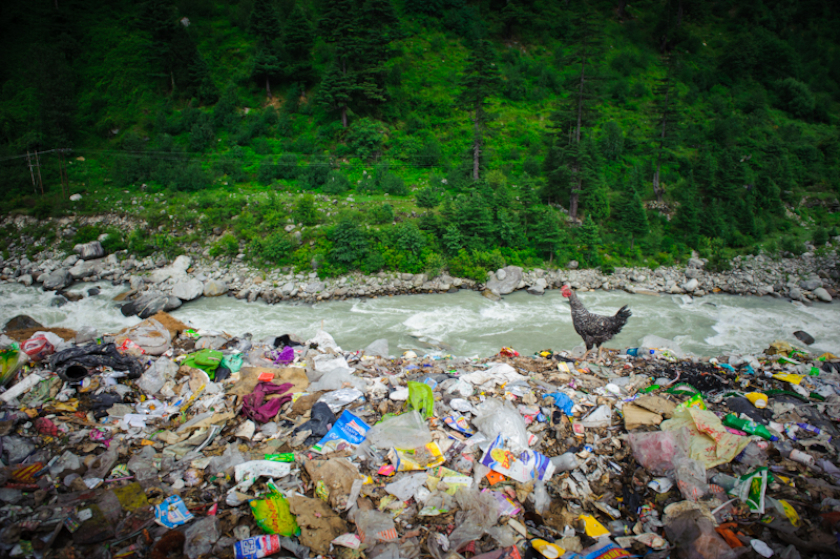 water pollution in cambodia essay Causes and effects of water pollution from the water instead, they take in the chemicals from the oil water pollution is a serious threat and has many effects.