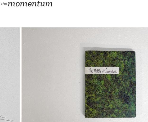 the momentum 1