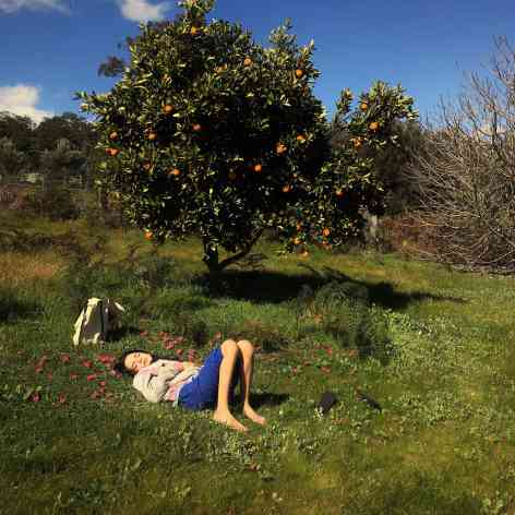 Yali under the Orange tree
